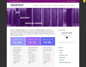 AAA Business Hosting