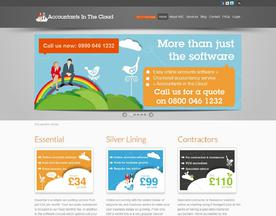 Accountants in the Cloud